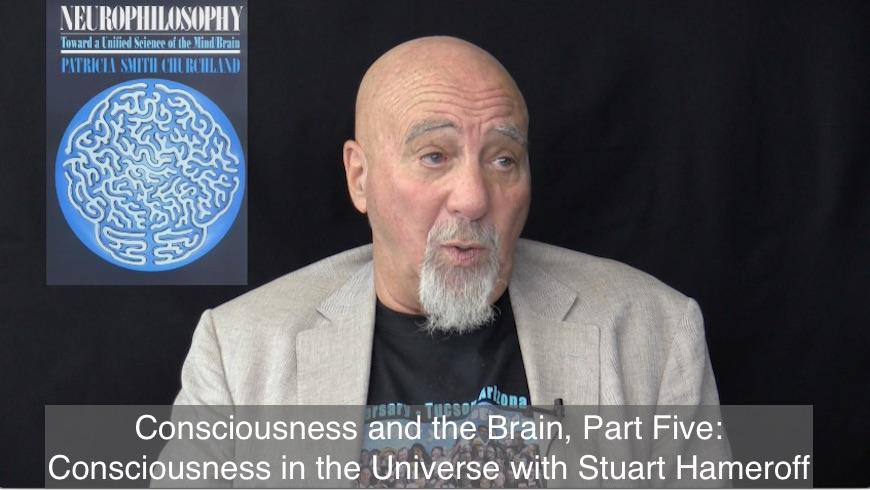 hameroff-consciousness-universe